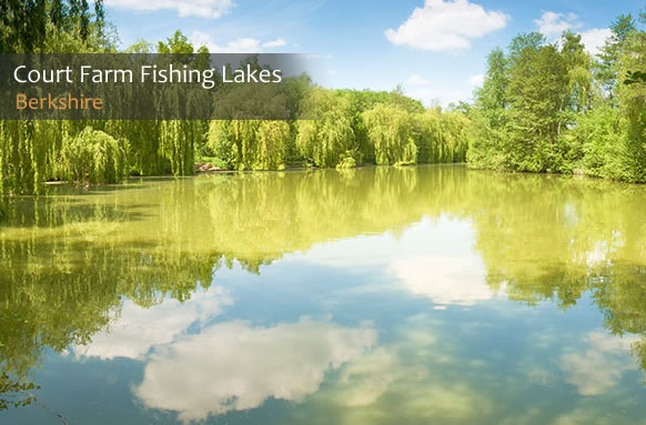 Court Farm Fishing Lakes