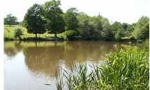 Barrets Park Farm Fishery