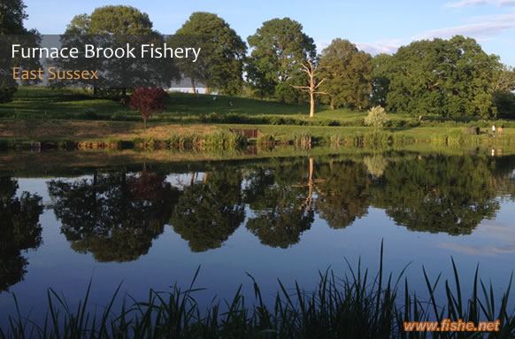 Furnace Brook Fishing Lakes