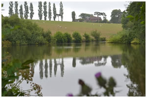 Merricks Fishery