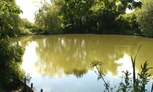 Oast Farm Lake