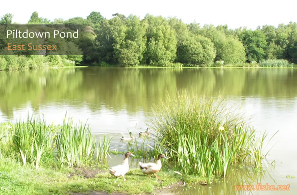 Piltdown Pond thumb