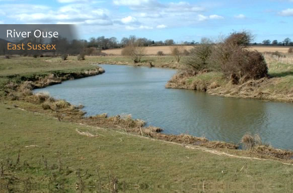 Hassocks & District Angling Society thumb