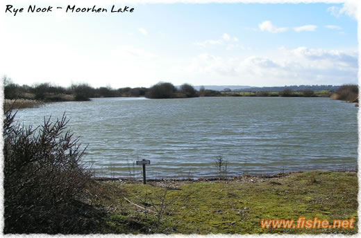 Moorhen Lake