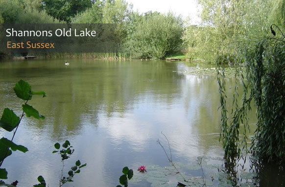 Shannons Old Fishing Lake