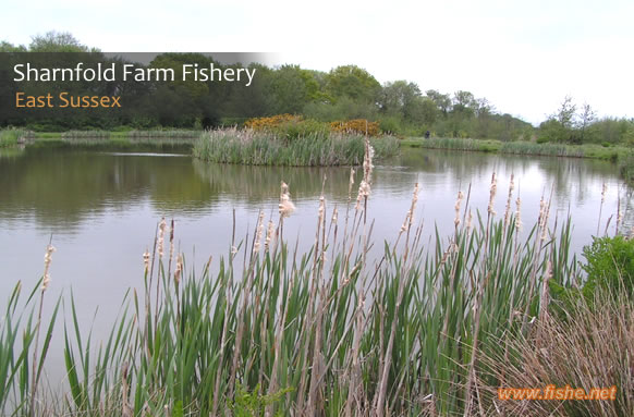 Sharnfold Farm Fishery