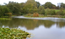 Tanyards Fishery
