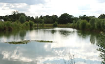 Blind Lane Fishery