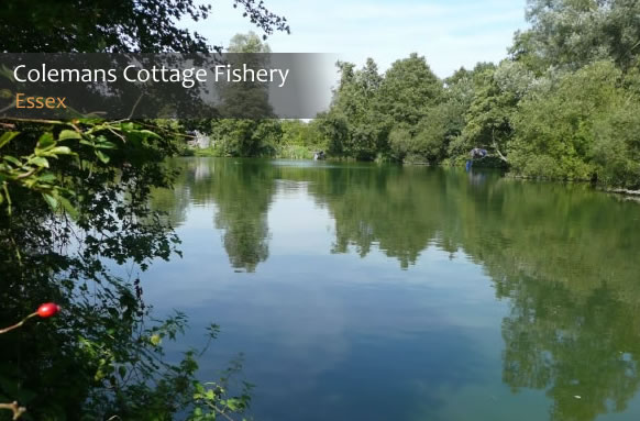 Colemans Cottage Fishery | Coarse Fishery