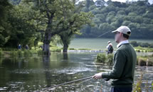 Meon Trout Fishery