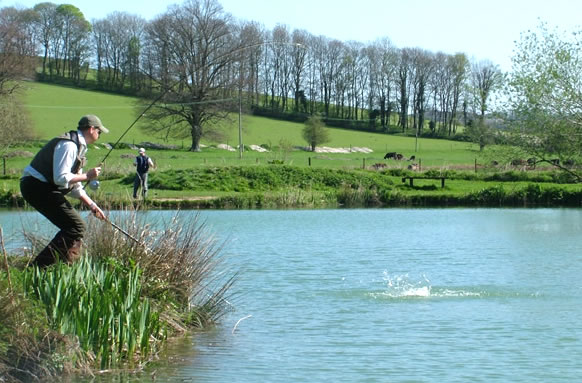 Moorhen Trout Fishing Lakes thumb