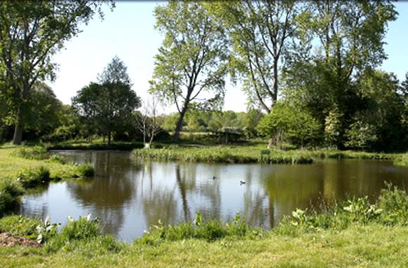 Woodington Trout Fishing Lakes