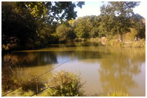 Cackle Hill Fishery