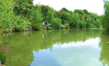 Claygate Lakes