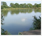 Hartley Lands Farm Fishery