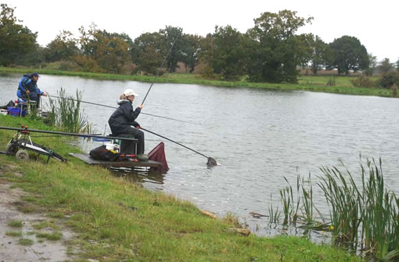 Frant Lakes Fishery thumb