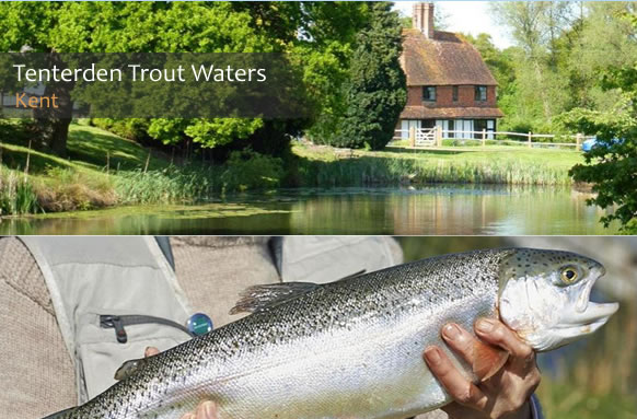 Tenterden Trout Fishing Lakes thumb