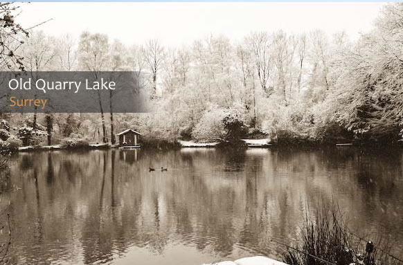 Anglers tips on old quarry lake for Quarry lakes fishing