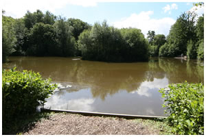 Hunters Lodge Fishery